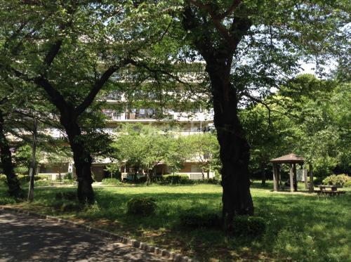 サンヴァリエ桜堤>近隣