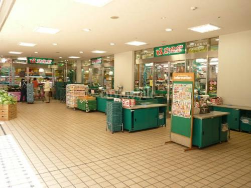 アーバンライフ月島駅前イースト>近隣スーパー
