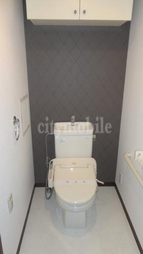 フラッツ南大泉>トイレ