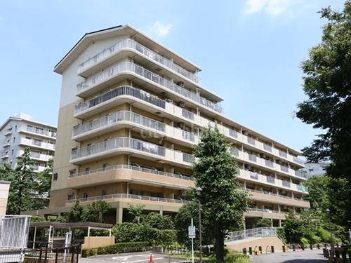 新川・島屋敷通り>外観