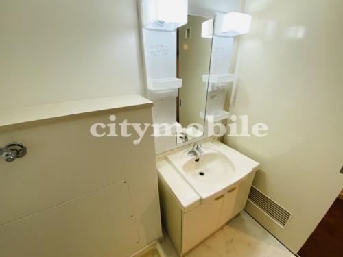 トミンハイム蓮根二丁目>洗面所