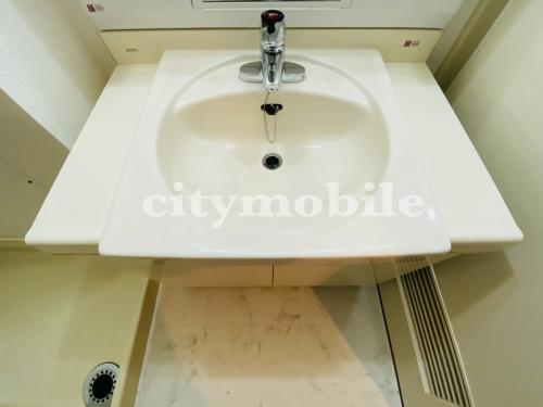トミンハイム蓮根二丁目>洗面台