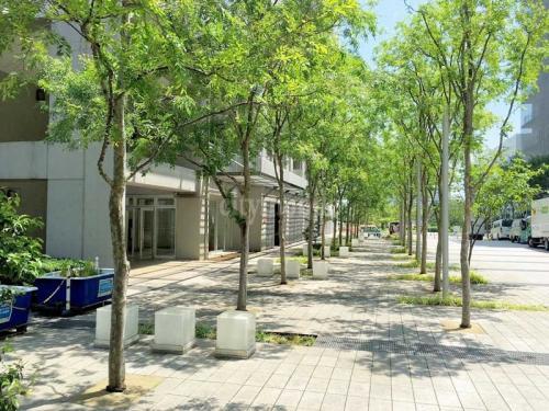 東雲キャナルコートCODAN>敷地内歩道