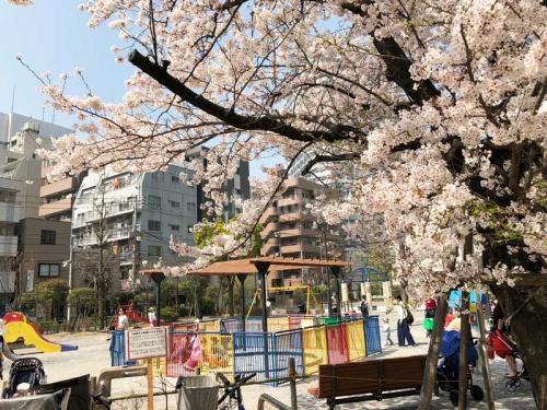 セルリアンホームズ勝どき>近隣公園