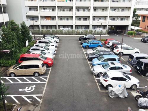 コーシャハイム上鷺宮>駐車場