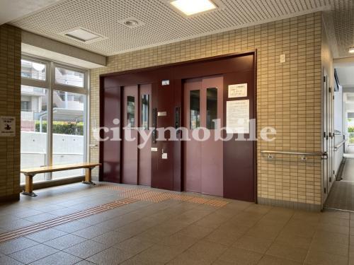 トミンハイム南台三丁目>エレベーターホール