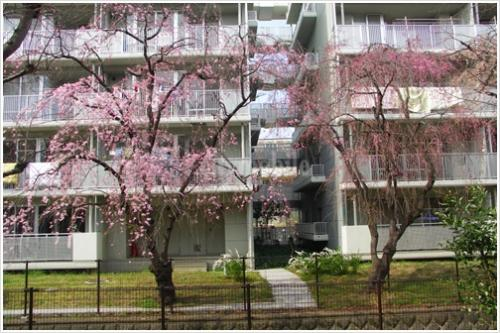 グリーンタウン小金井>外観