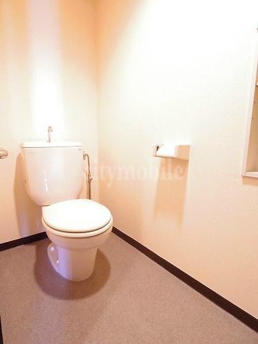 ヴィラセリーズ>トイレ