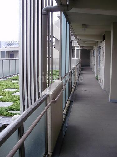 シャレール本駒込>廊下
