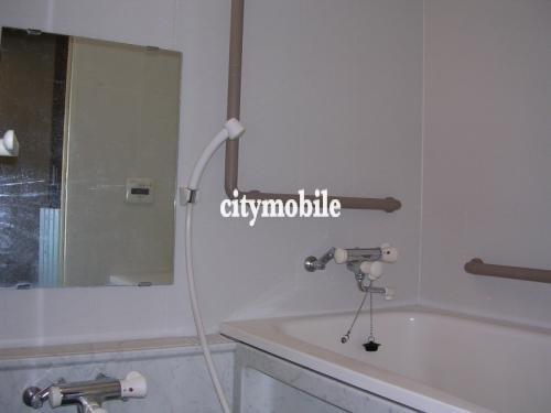 キャリーハイツFUNAKI2>浴室